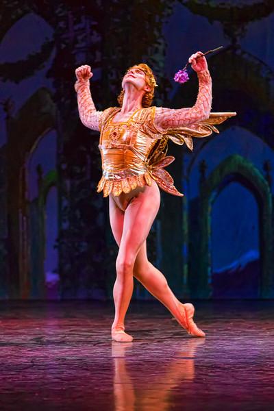 053   Northwest Florida Ballet A Midsummer Night's Dream Performance