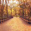 New York Autumn - Central Park - The Mall