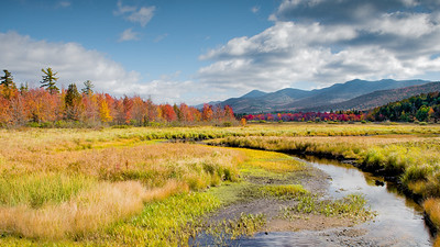 Saranac River - McKenzie Mt Wilderness