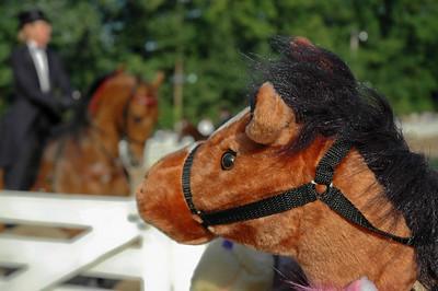 """If Wishes Were Horses"" Secret dreams of stick horses."