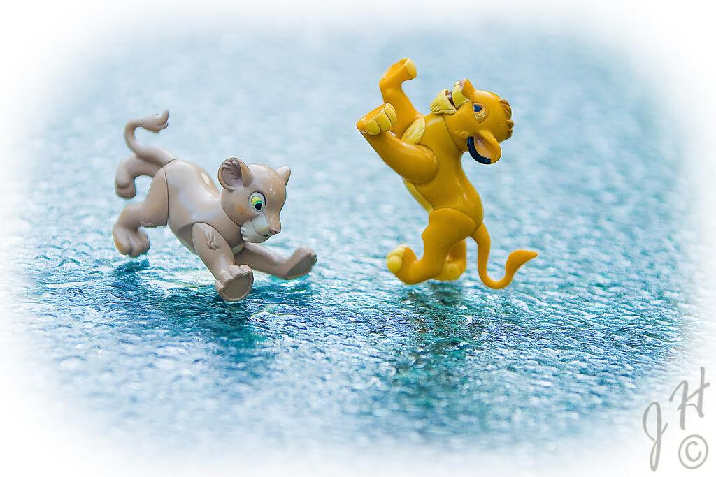 Sunday morning comic relief with Nala & Simba - on ice.