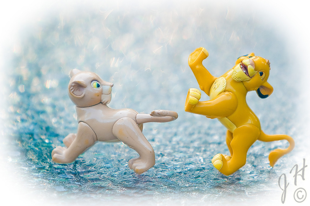 Sunday morning comic relief with Nala & Simba - on ice.
