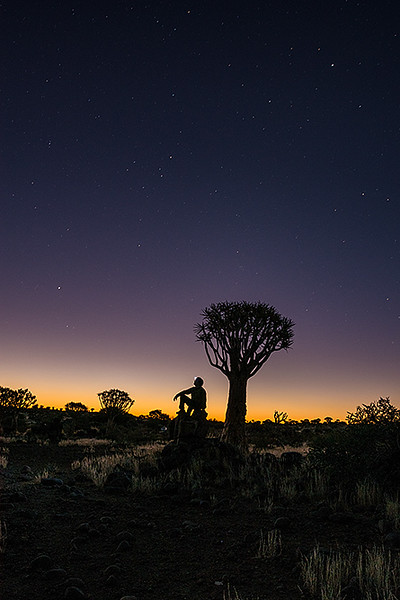 Nam 005  Star Gazing in a Quiver Tree Forest, Namibia