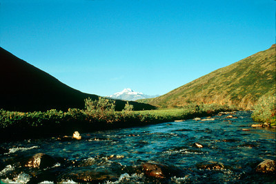 North America, USA, Alaska, ANWR, Mt. Chamberlin from Karen Creek