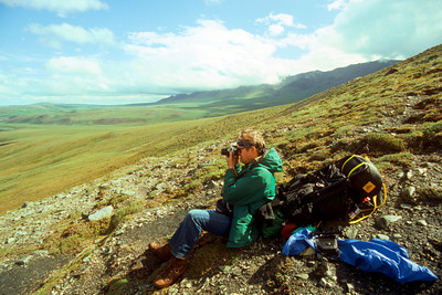 North America, USA, Alaska, ANWR, Backpackers above Kekiktuk River, June, 1990