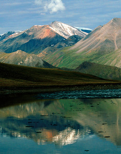 North America, USA, Alaska, ANWR, Franklin Mts., Brooks Range reflected in Schrader Lake, July, 1990