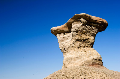 Mushroom Rock in Bisti Wilderness Badlands, New Mexico