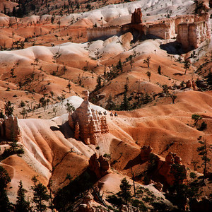 Bryce Canyon, Utah, Horseback Riders