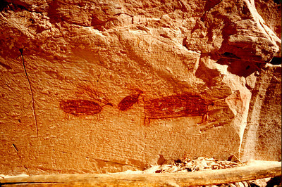 Horseshoe Shelter , Elk Pictographs, Horseshoe Canyon, Canyonlands National Park
