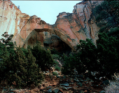 Nobody, North America, USA, New Mexico, El Malpais National Monument, La Ventana Arch