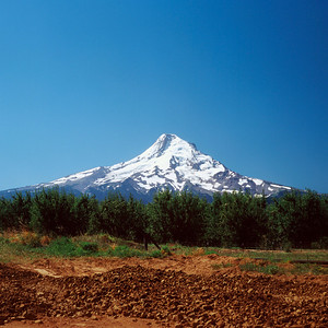 Mount Hood NP, Oregon
