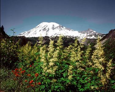 Mount Rainier, Mount Rainier NP
