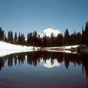 Mount Rainier from Tipso Lake, Mount Rainier NP