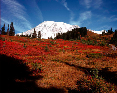 Mount Rainier Fall Color,  Mount Rainier NP