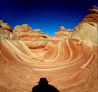 Hiker in the Wind and water eroded sandstone in Coyote Buttes North,Paria Canyon Vermillion Cliffs Wilderness, Coconino County , AZ looking north