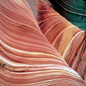 Wind and water eroded sandstone in Coyote Buttes North,Paria Canyon Vermillion Cliffs Wilderness, Coconino County , AZ