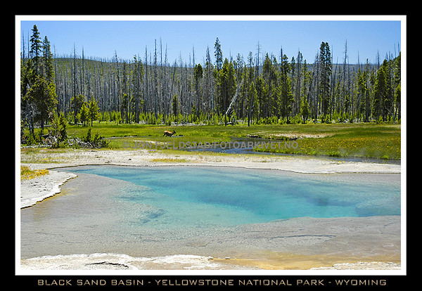 BLACK SAND BASIN - YELLOWSTONE NATIONAL PARK