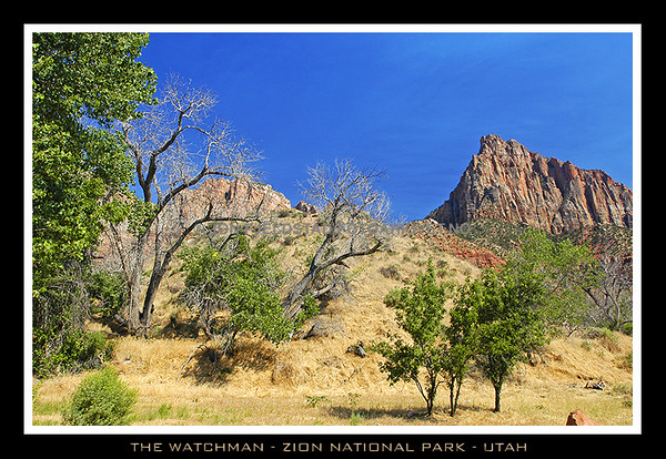 THE WATCHMAN 1997M- 6555 FT. ZION NATIONAL PARK - UTAH