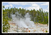 NORRIS GEYSIR BASIN - YELLOWSTONE NATIONAL PARK - WYOMING