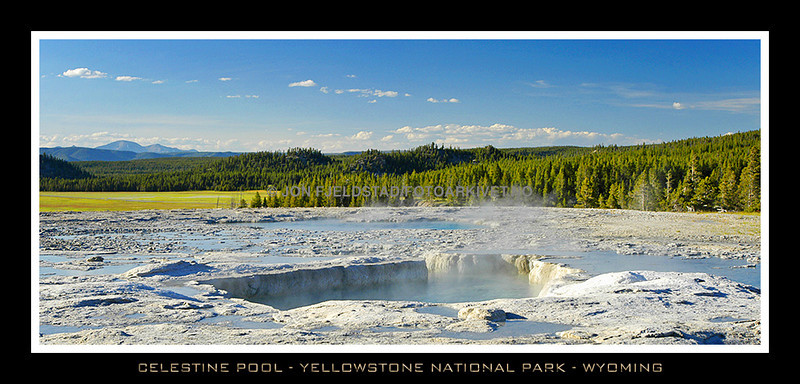 CELESTINE POOL - FOUNTAIN PAINT POT - YELLOWSTONE NATIONAL PARK