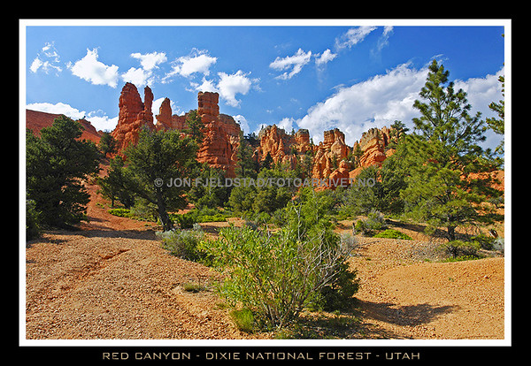 RED CANYON - DIXIE NATIONAL FOREST -UTAH