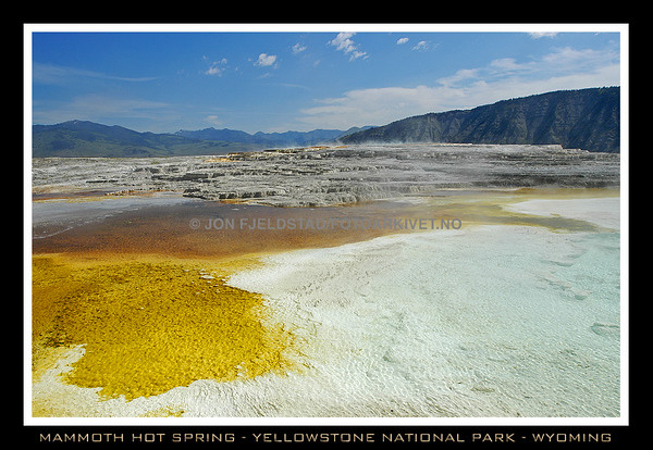 MAMMOTH HOT SPRING - YELLOWSTONE NATIONAL PARK - WYOMING