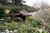 Tatton Park Japanese Garden Knutsford Cheshire