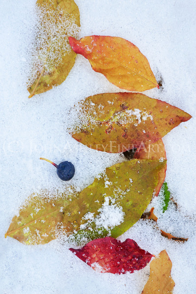 """Huckleberry Fall."""