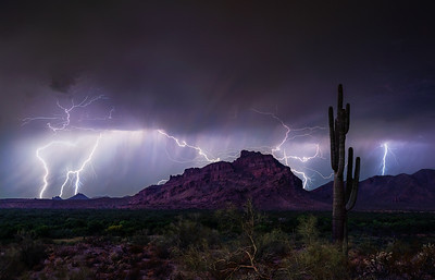 037 - Red Mountain Saguaro Lightning