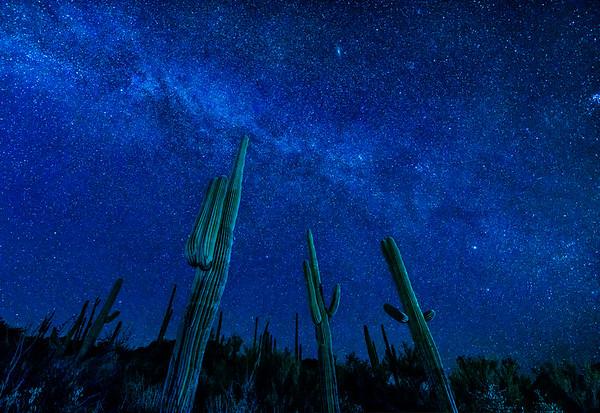 Blue Starry Night, Desert of Arizona