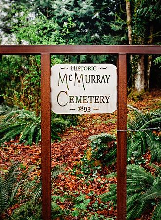 Lake McMurray Cemetery 2020