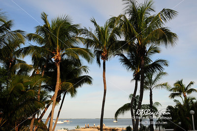 Key Largo, FL  View of the Gulf_1691