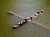 AZ-Phoenix-Zoo-2004-10-17-0003