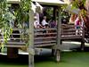 AZ-Phoenix-Zoo-2004-10-17-0030