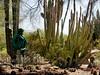 AZ-Phoenix-Desert Botanical Garden-2004-03-27-0034