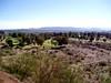AZ-Phoenix-Papago Park-2004-03-07-0010