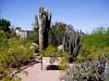 AZ-Phoenix-Desert Botanical Garden-2004-03-27-0015