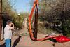AZ-Phoenix-Desert Botanical Garden 2013-03-04-212