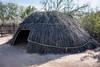 AZ-Phoenix-Desert Botanical Garden 2013-03-04-181
