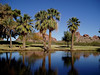 AZ-Phoenix-Papago Park-2004-03-07-0005