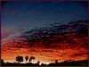 ART-2002-01-23-AZ-Phoenix-Sunrise