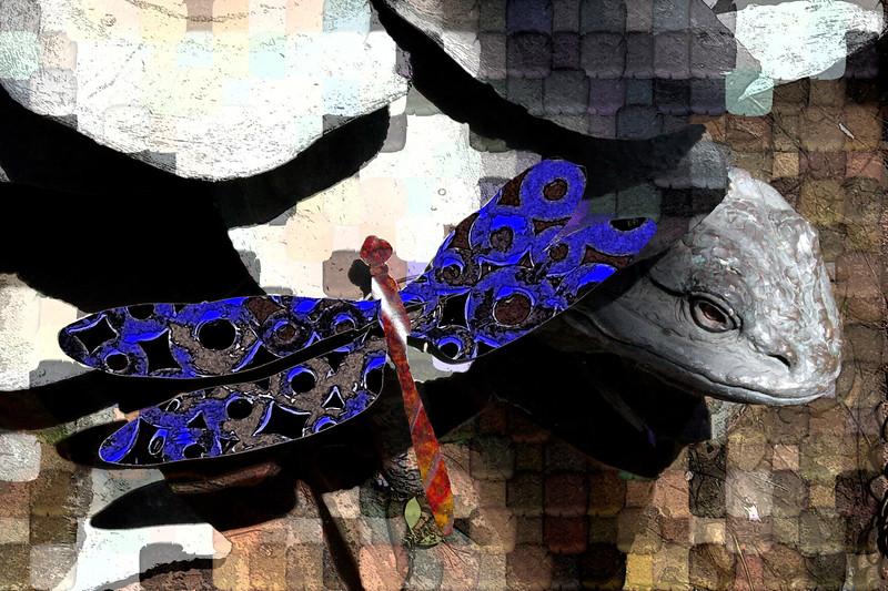 ART-2005-04-02-Dragonfly-0001