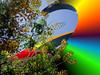 ART-2005-03-27-Phoenix Art Objects Enhancements-0001