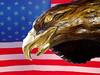 ART-2005-04-23-Eagle and Flag-0001