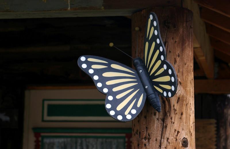 Butterfly-2005-09-06-0001