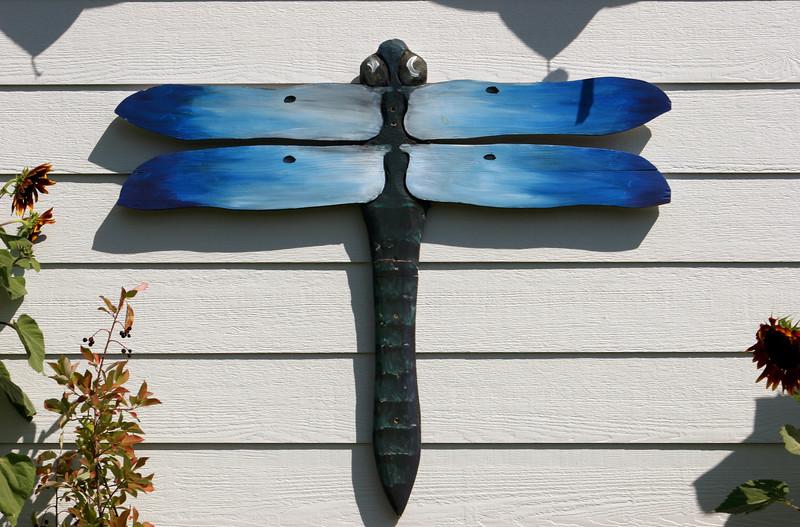 Dragonfly-2005-08-27-0001