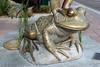 Frog-AZ-Mesa-2005-07-24-0003