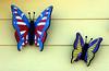 Butterfly-2005-07-02-0001