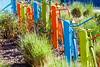 Colorful Objects and Art Phoenix, AZ-2014-01-26-108