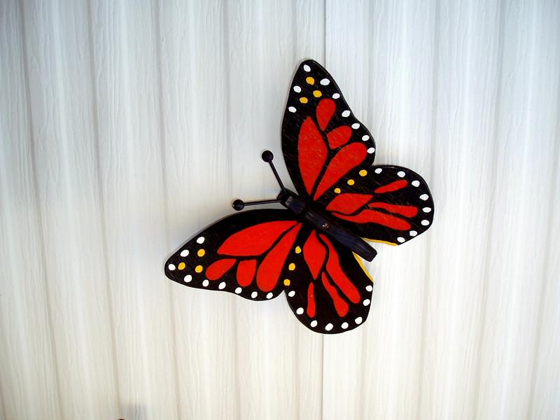 Butterfly-2004-03-13-0001
